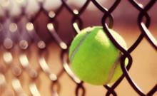 bal in hek